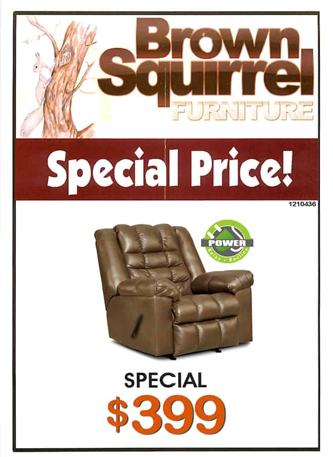 Special Brown Squirrel Furniture