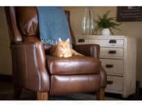 furniture-live-recliners-Leather